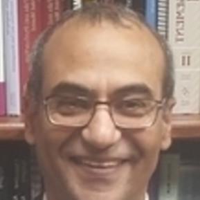 Mohamed El-Ansary, MD