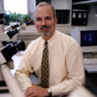 David Klimstra, MD
