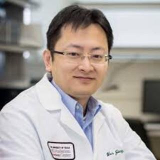 Wen Jiang, MD