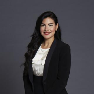 Viviana Figueroa Diaz, MD