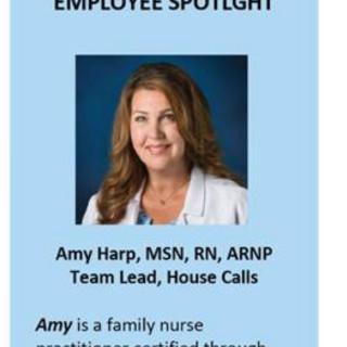 Amy Harp