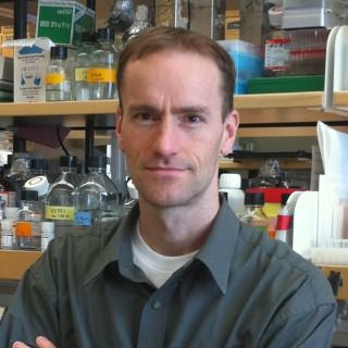 Duane Wesemann, MD