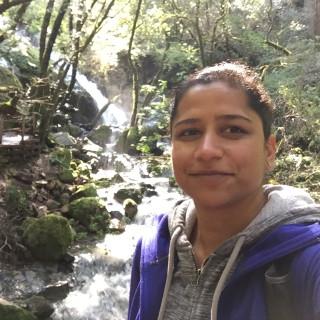 Nilu Singh